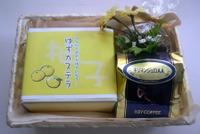 201012223_gift