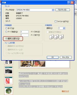 20110816_bubuninsatsu