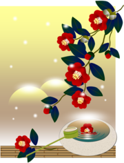Camellia000