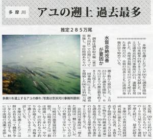 2012_tamagawa_ayu