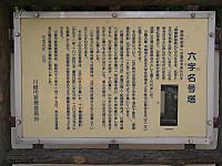 Furin006