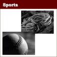 SPO008 プロ野球2012