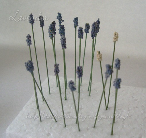 Lavender_howto