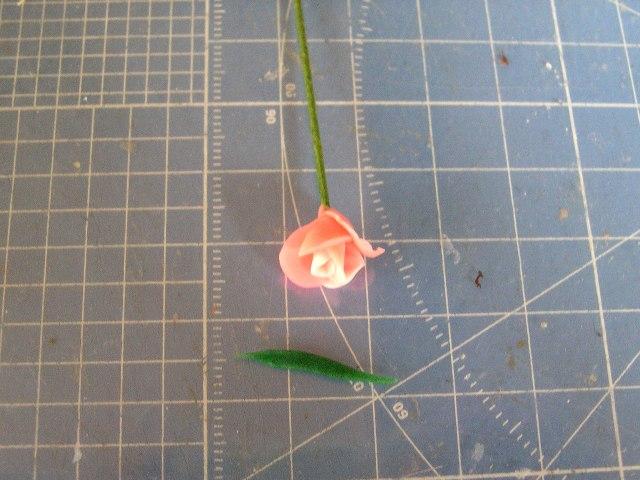 Rose_tulip08