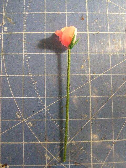 Rose_tulip10