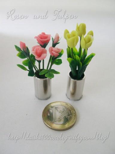 Rose_tulip_m