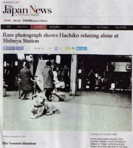 Hachi_yomiuri