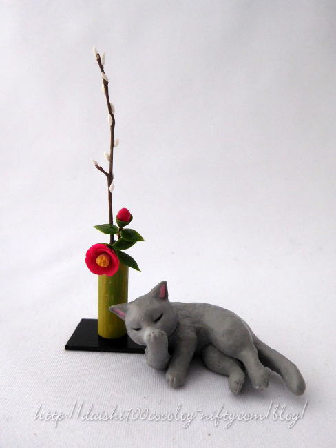 Miniature_camellia_and_pussywillow0