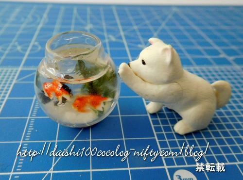 Miniature_goldfish_bowl01