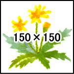 Image_test01