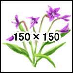 Image_test02